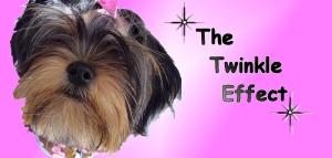 twinkle_effect2